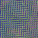 ANIMAL COLLECTIVE - Merriweather Post Pavillion (Domino 2009.)