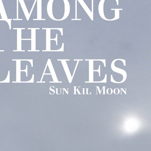 sun_kil_moon_among_the_leaves_cover